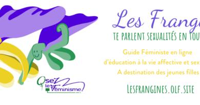 Les Frangines : Le Guide Féministe D'éducation À La Vie Affective Et Sexuelle